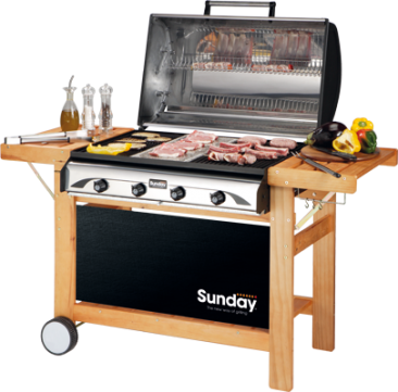 profy4-barbecue